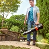 Picture of Worx Turbine 800 Electric Leaf Blower