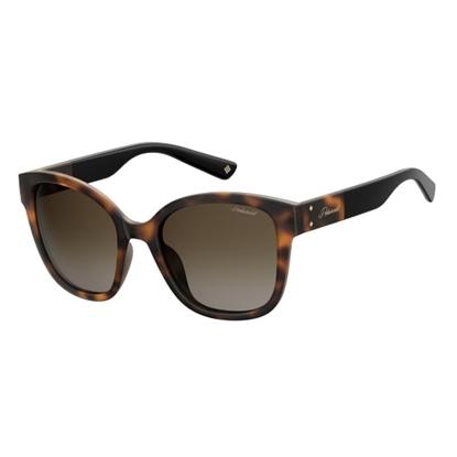 Picture of Polaroid Ladies' Square Sunglasses- Dark Havana/Brown Gradient