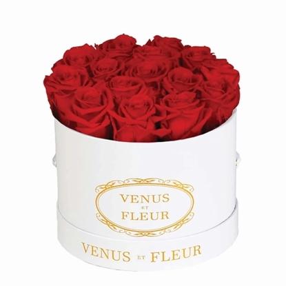 Picture of Venus Et Fleur Small Round White Classic