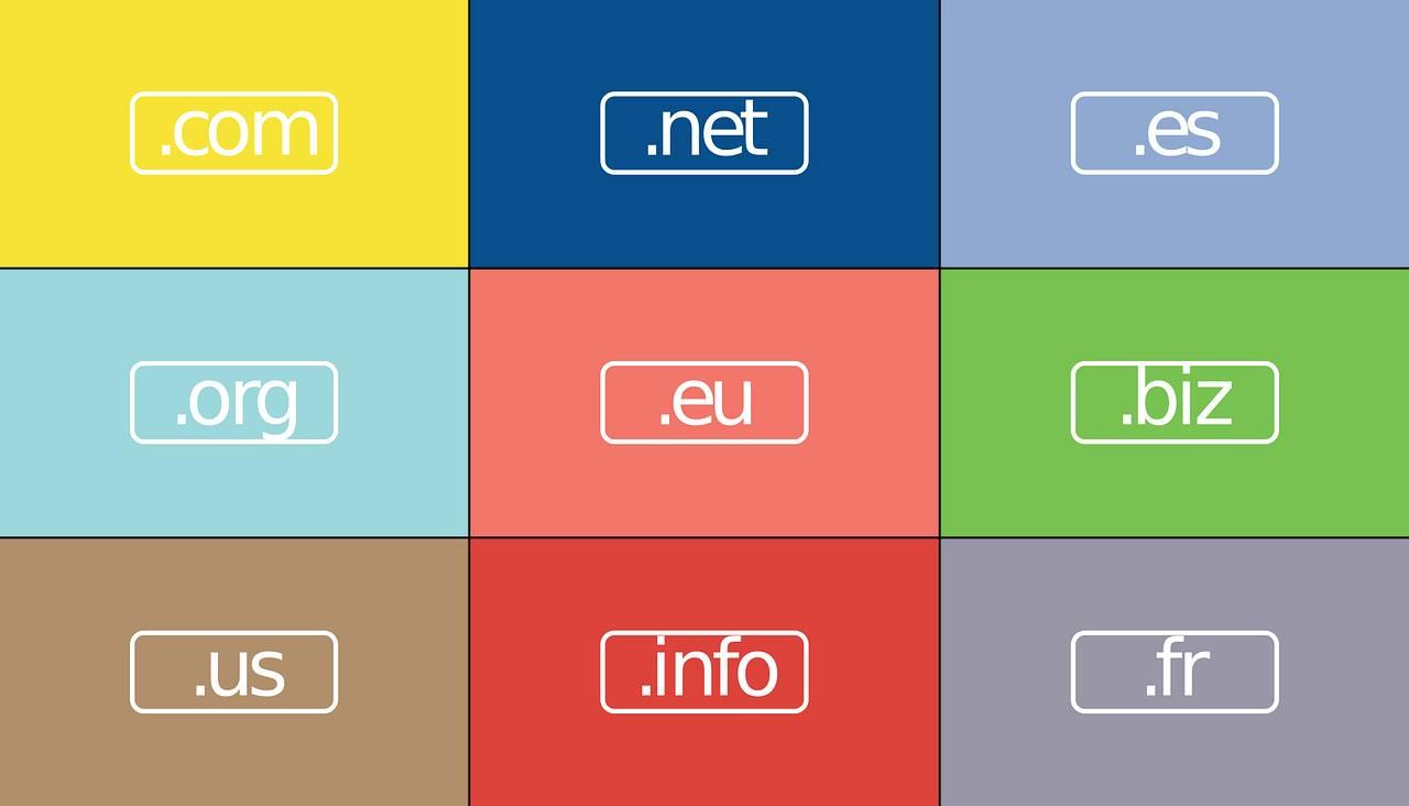 ¿Cómo escoger el dominio ideal?
