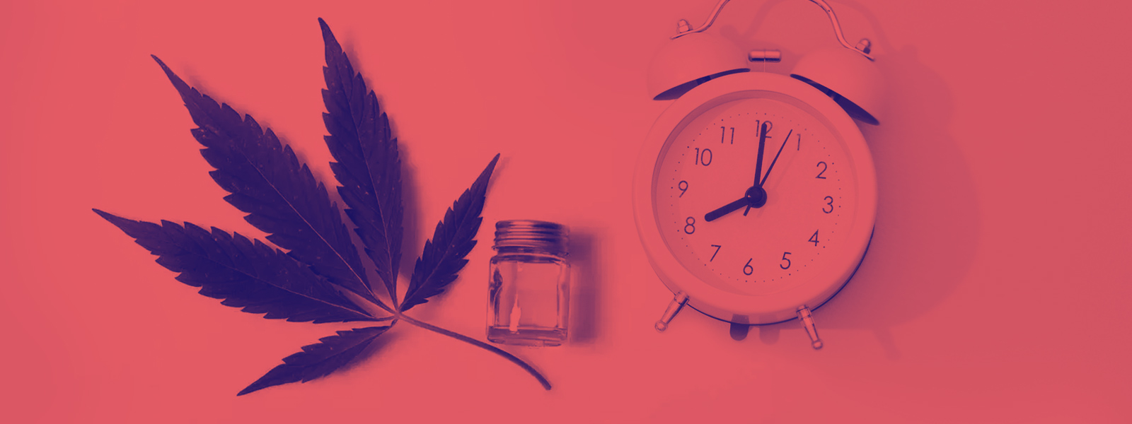 CBD and How Long Does CBD Work For?