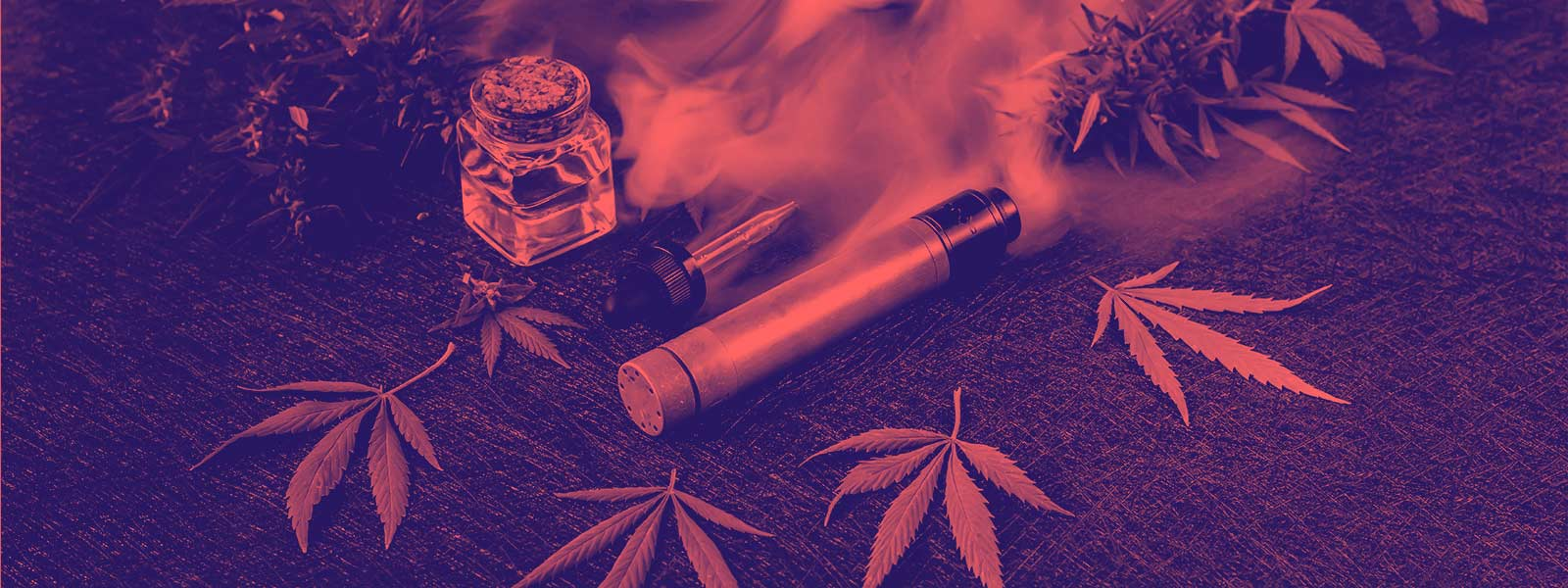 CBD and An Introduction to Medical Uses of THC