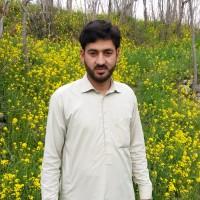 Waqar Muhammad