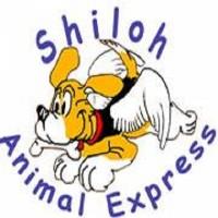 Shiloh Animal Express photo