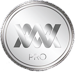 WM PROFESSIONAL logo
