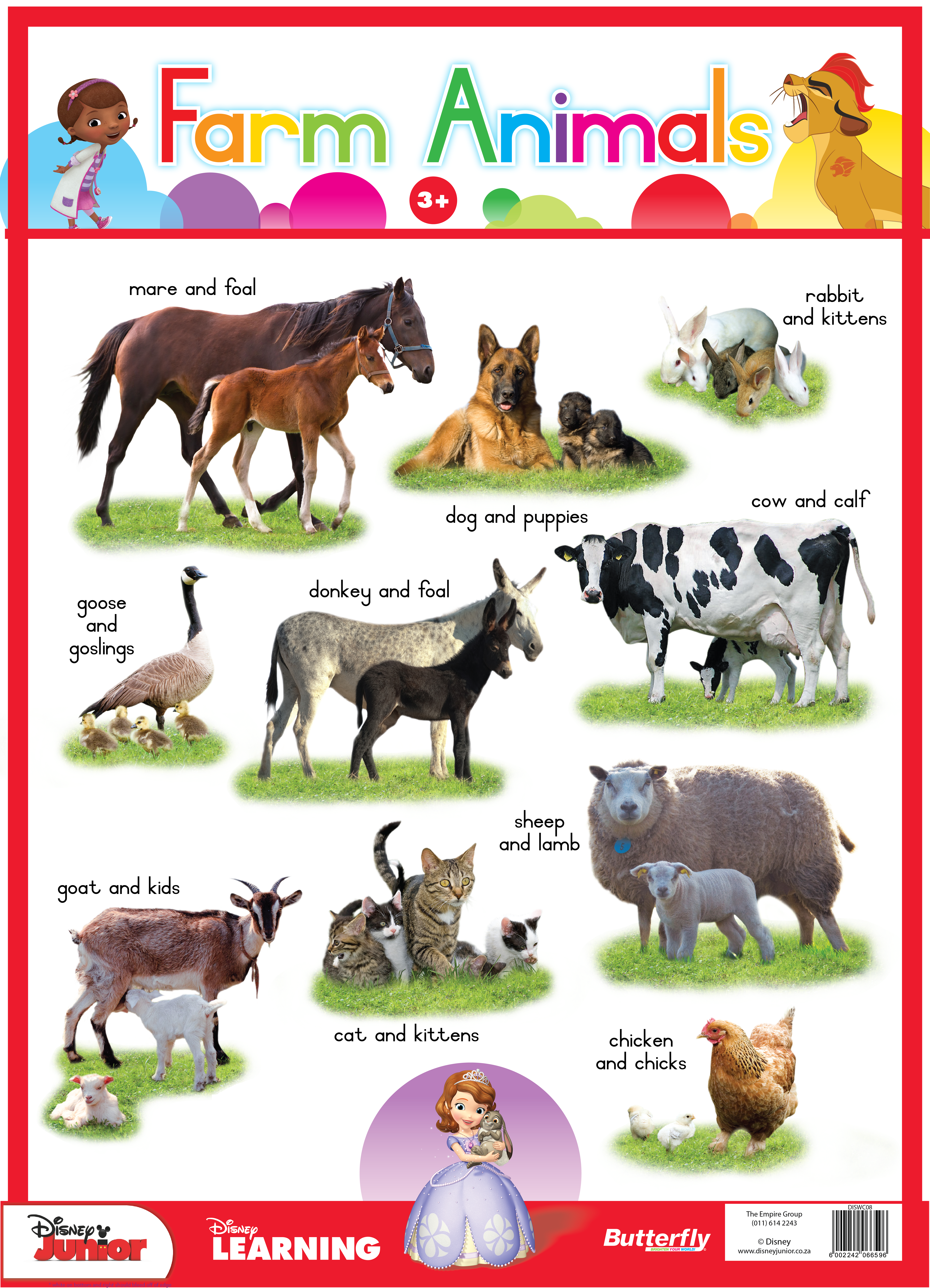 Disney Poster - Farm Animals