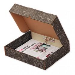 Rexel Springclip Box File