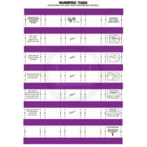 Tidy Files Numeric Labels - Dark Purple