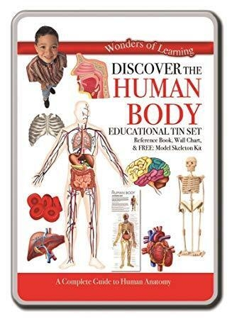 Wonders Of Learning Tin Set - The Human Body