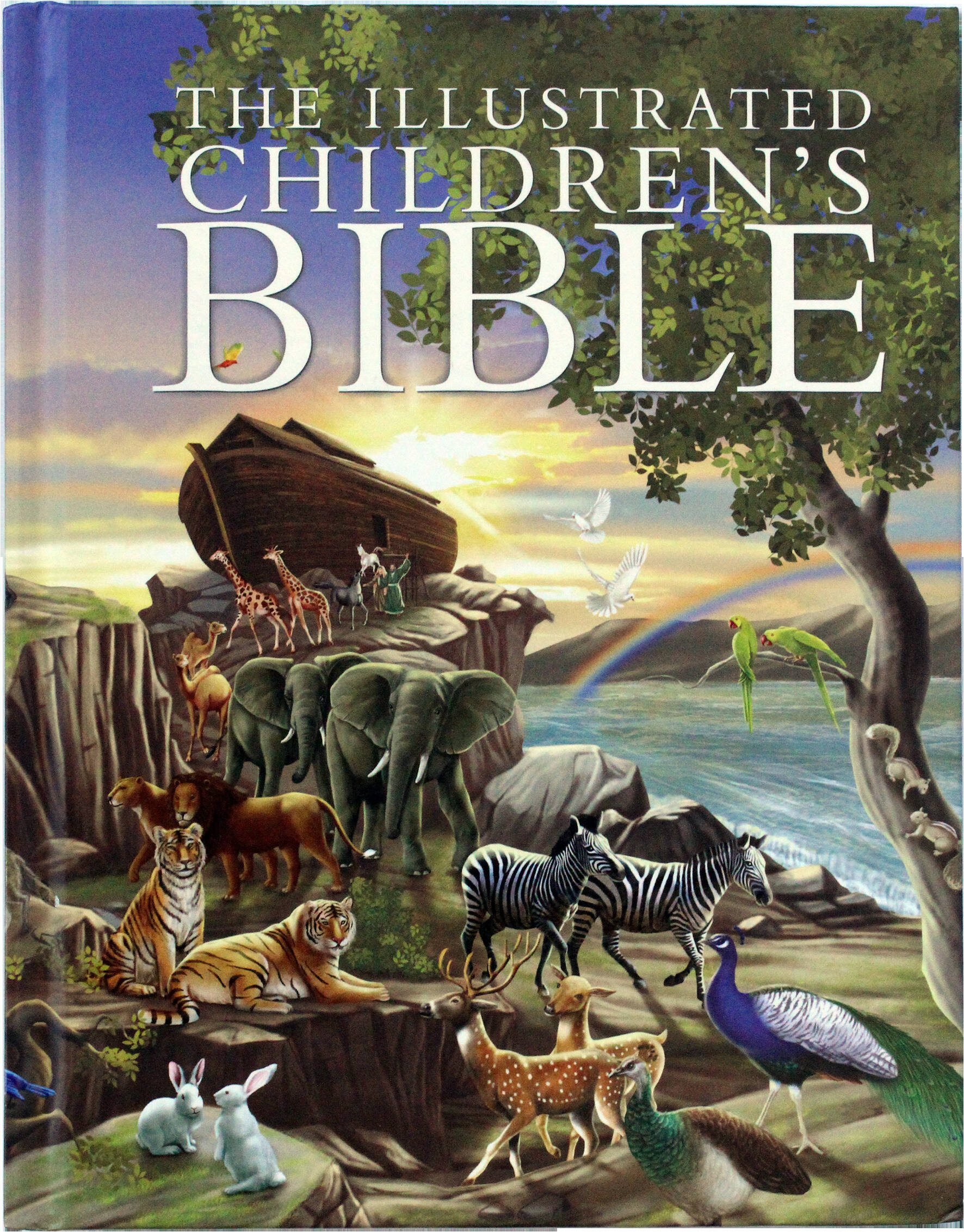 Children's Illustrated Bible (CIB)