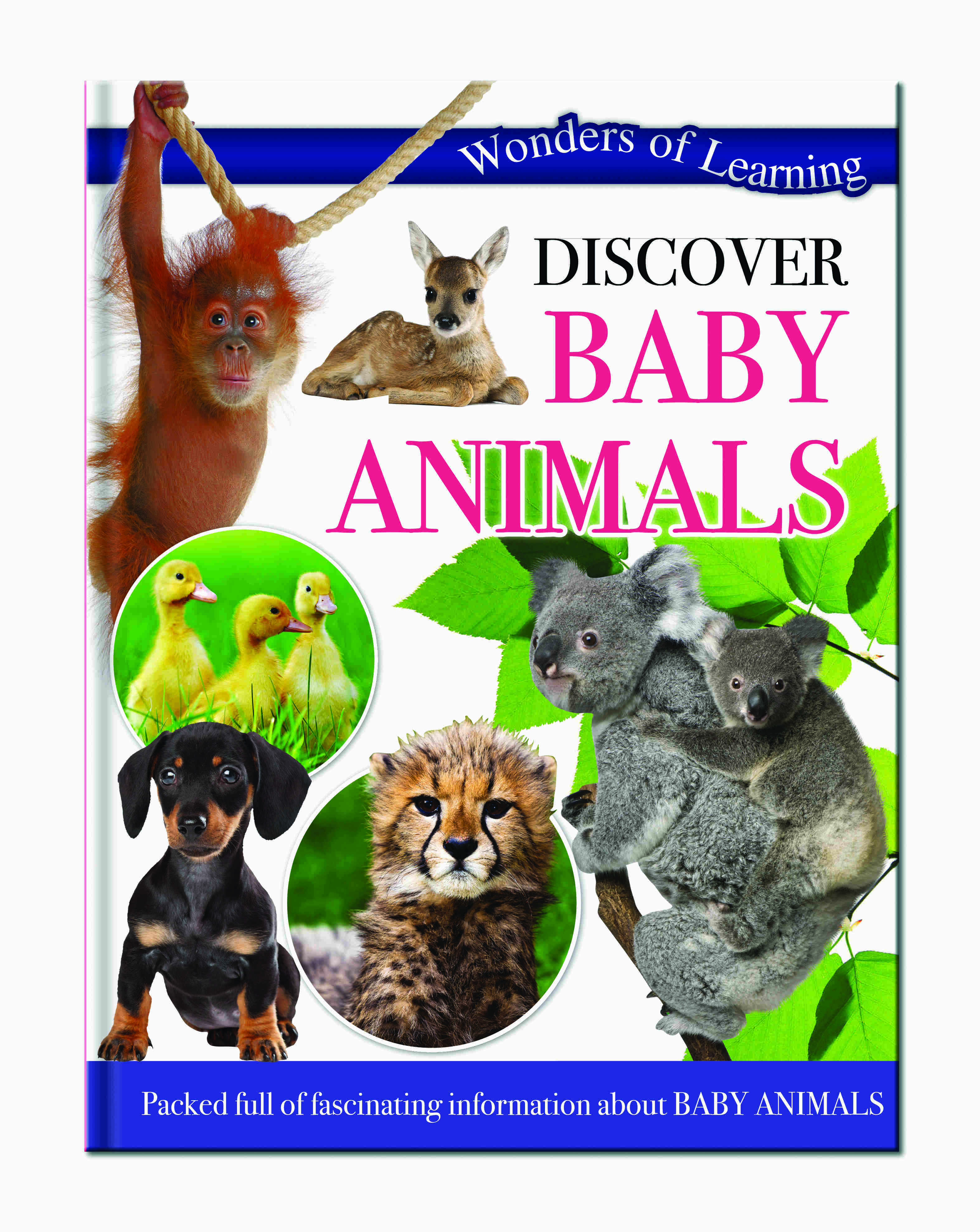 Wonders Of Learning Book - Baby Animals