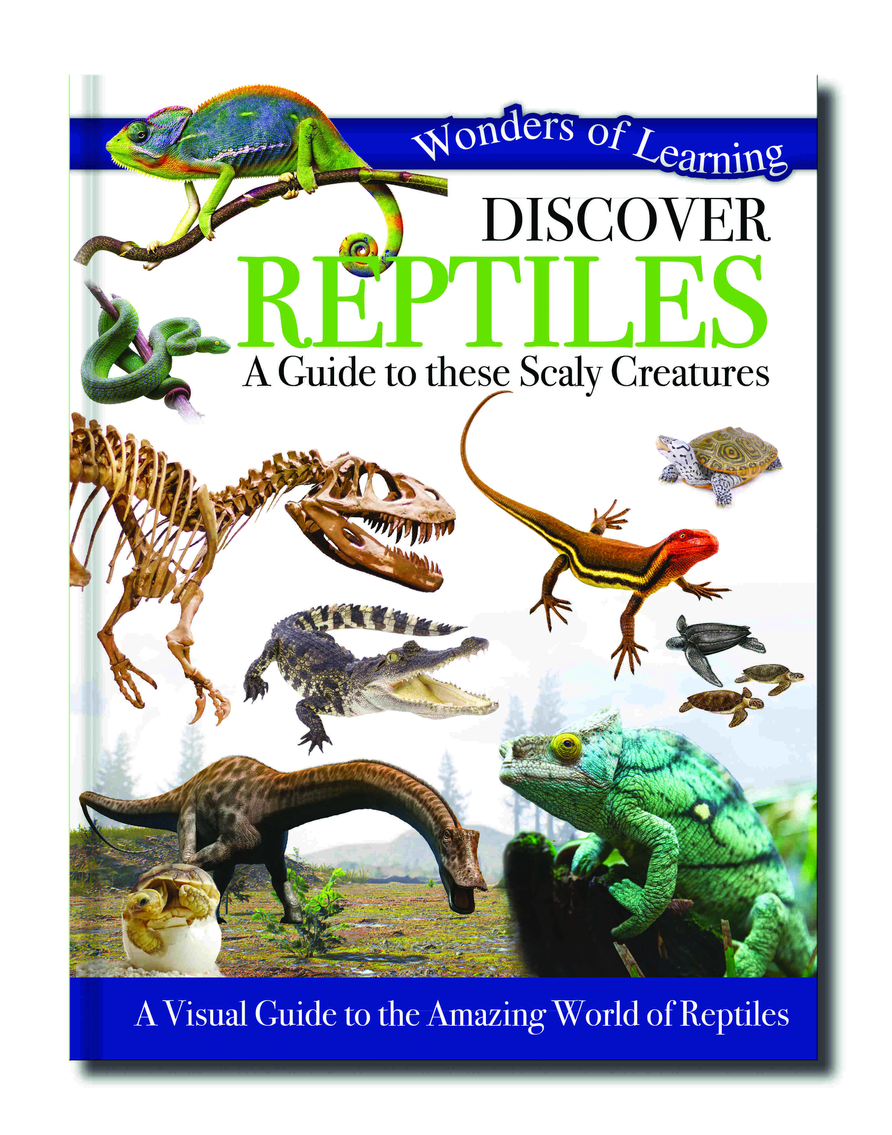 Wonders Of Learning Book - Reptiles