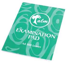 Exam Pads 100 Page Punched