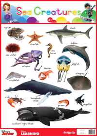 Disney Junior - Wallchart Sea Creatures