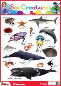 Disney Poster - Sea Creatures