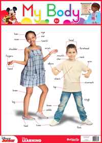 Disney Junior - Wallchart My Body