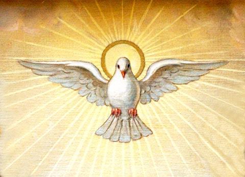 arras para boda de tres oros, oro florentino con diseño del espíritu Santo