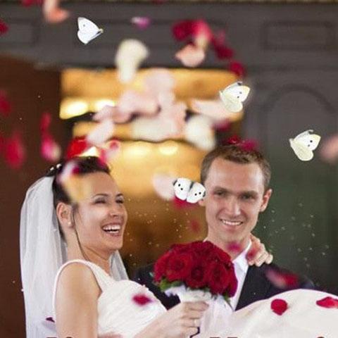 pareja de recién casados liberando mariposas con el objetivo de cumplir sus deseos