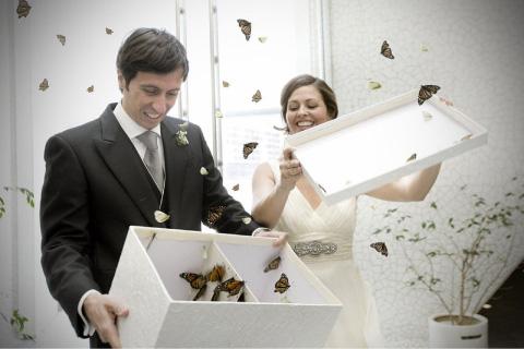 Esposos soltando mariposas en boda
