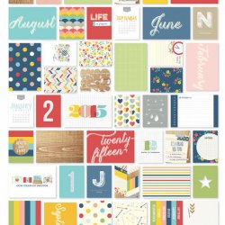 SALE Simple Stories 2015 Life Documented Collection Snap Card Set