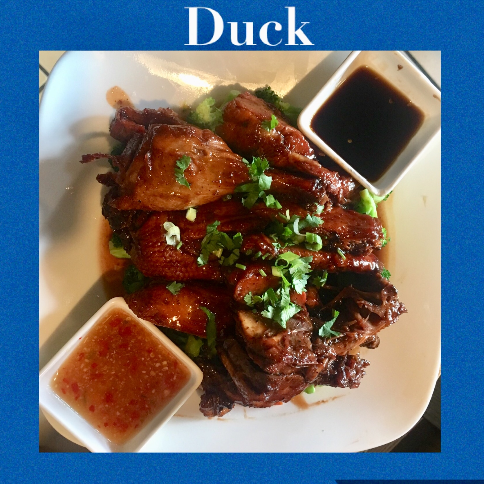 53. ROASTED DUCK (HALF/WHOLE)