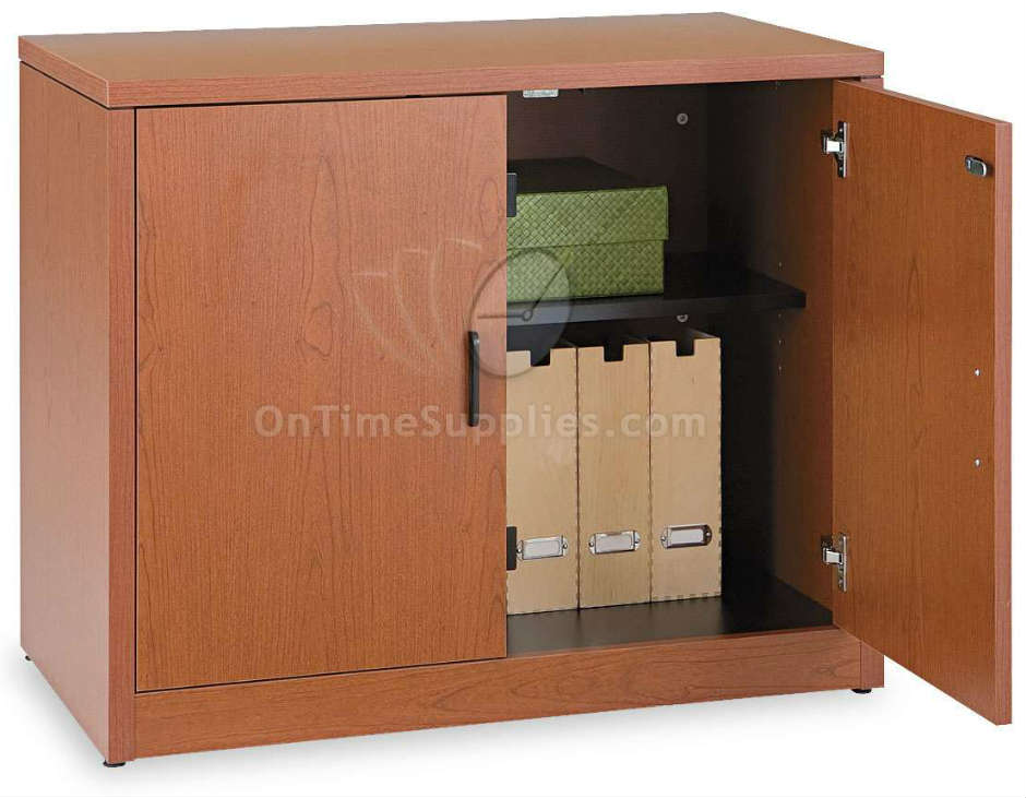 Impressive Cabinet With Doors Style