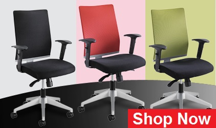Ergonomic desk chair guide