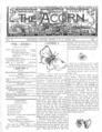 Acorn 02 12 01 thumb