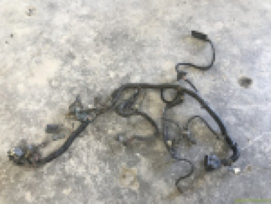 Engine Wiring Harness 4.2L 258 6 Cylinder AMC