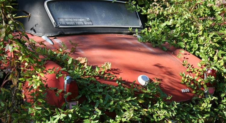 Found a Alfa Romeo in Louisville, Ky
