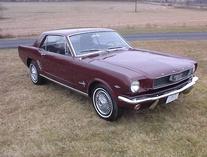 svisek-Ford Mustang