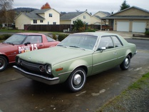 Javelin (Forum Supporter)-AMC Hornet