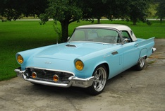 Will-Ford Thunderbird