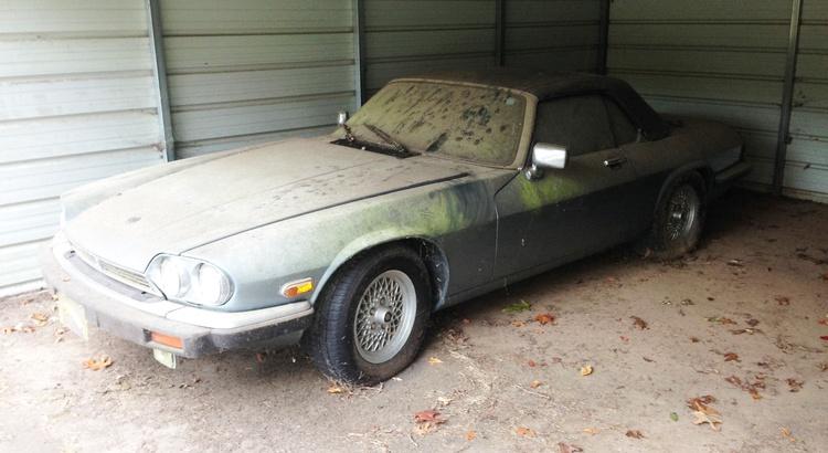 Found a Jaguar in Pickens, SC