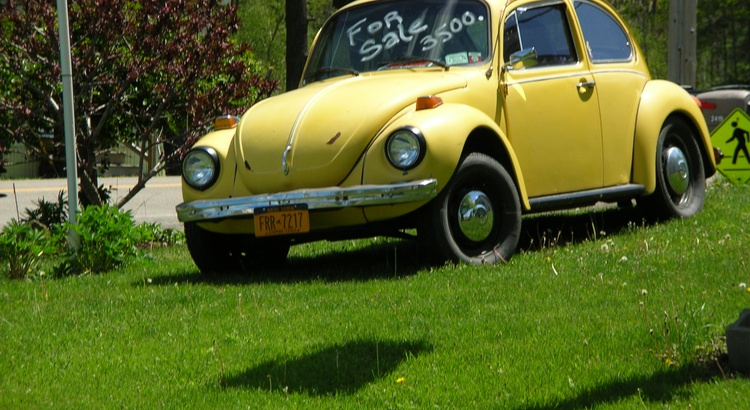 Found a Volkswagen in Waktins Glen, Ny