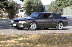 RTMustang-Ford Mustang