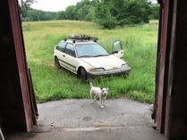Rendragyarrum-Honda Civic DX Hatch 4 speed