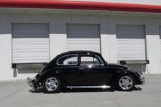 floridaguy-Volkswagen Beetle