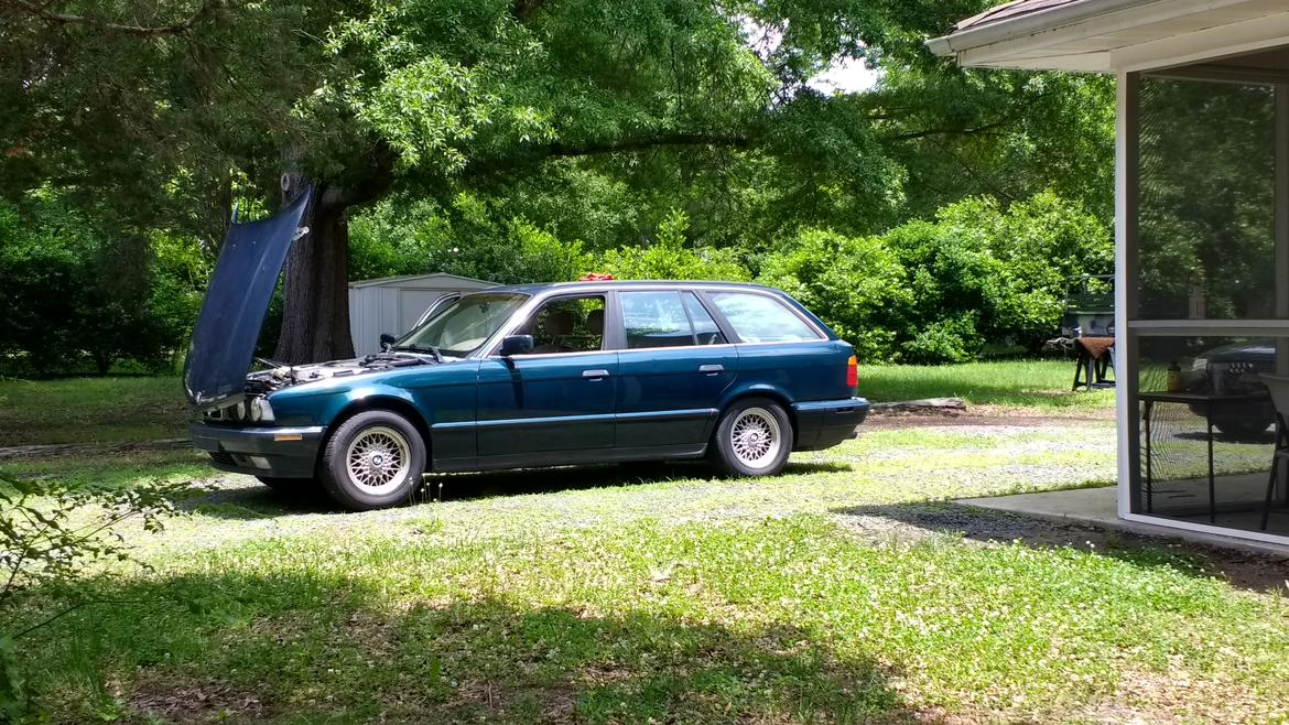 Help Name My New Project Car Bmw E34 V8 Manual Transmission Grassroots Motorsports Forum