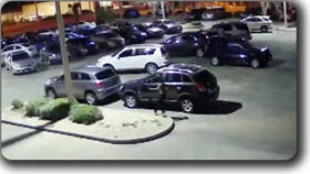Car theft in Florida