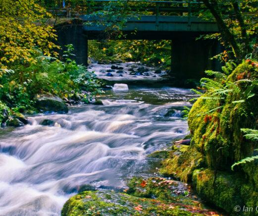 A rushing creek.
