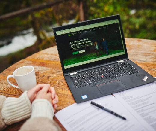 Landowner starting online application