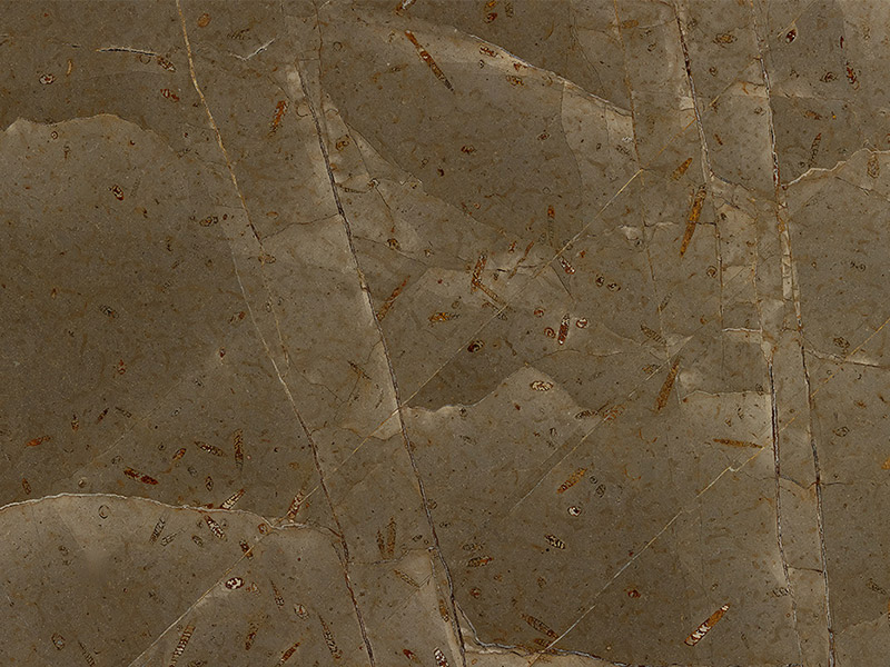 View of Marble - Azerobact Jurassic Brown Extra Leather 2cm & 3cm