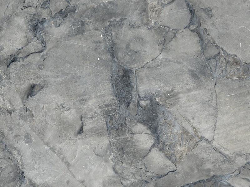 View of Marble - Brazilian Arabescato 3cm