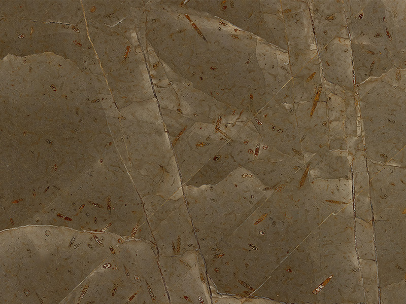 View of Marble - Jurassic Brown Classic 2cm