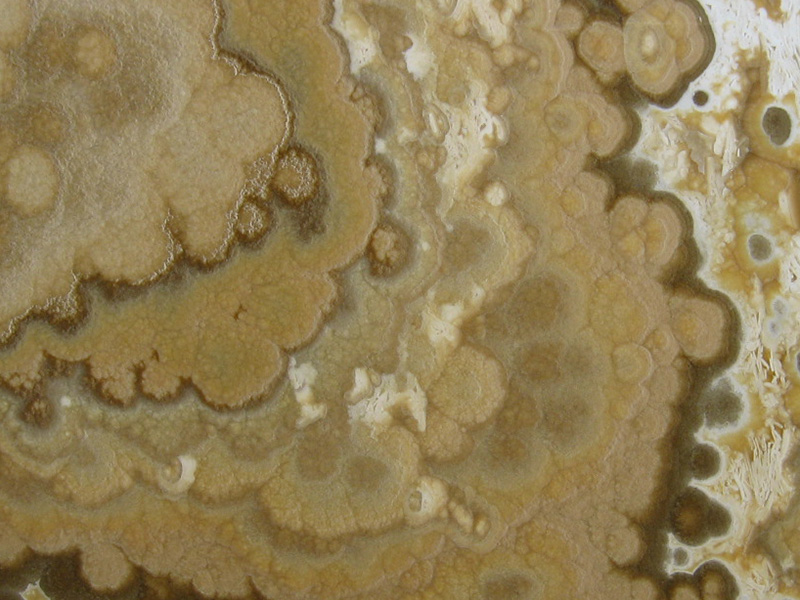 View of Onyx - Onyx Honey 2cm