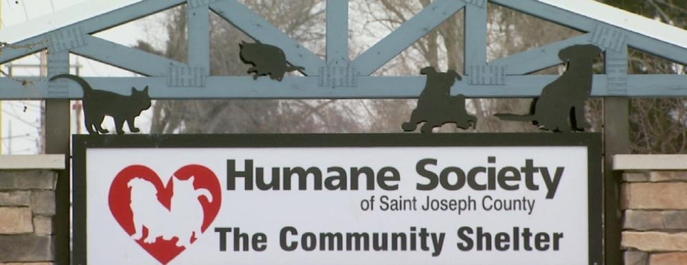 Humane Society of the St. Joseph County Photo