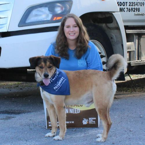 movers for mutts in knoxville marketing manager