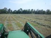 Anyone using a Drum mower for hay? - Coffee Shop - Red Power
