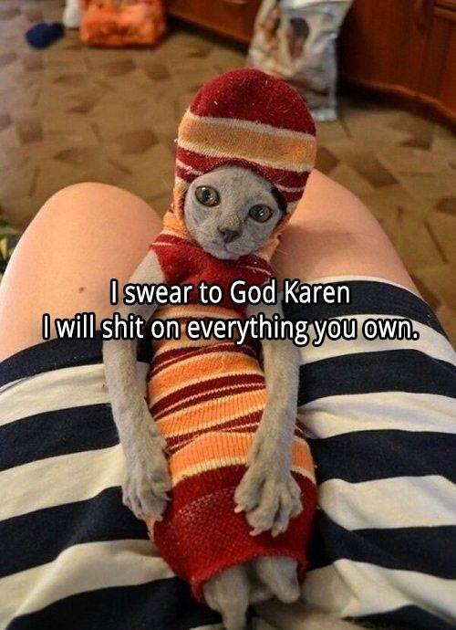 cat shit Karen.jpg
